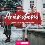 Preset-Arándano-Celular-BrandMe