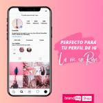 Preset-La-Vie-en-Rose-para-Instagram-Stories-BrandMe-Shop