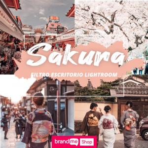 Preset-Sakura-Escritorio-BrandMe