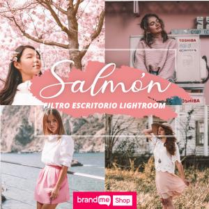 Preset-Salmón-Escritorio-BrandMe