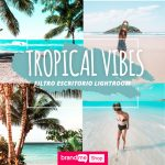 Preset-Tropical-Vibes-Escritorio-BrandMe